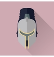 Helmet Headpiece Isolated Medieval Armour vector image