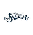 welcome summer hand lettering vector image