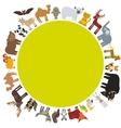 round frame animal card template bison bat fox vector image