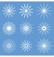Snowflakes Ornament Set vector image