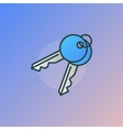 Keys colorful icon vector image