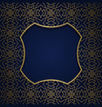 ornamental background with square shaped frame vector image