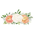 floral bouquet with white peach ranunculus flowers vector image