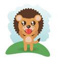 cute lion animal wildlife vector image vector image