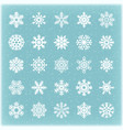 beautiful winter snowflakes for xmas card vector image
