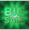 Big sale message EPS 8 vector image