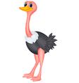 Cute ostrich cartoon vector image vector image