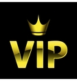 vip design vector image vector image