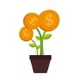 plant money pot dollar isolated vector image