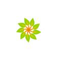 leaf circle abstract spin logo vector image