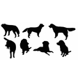 Set of dogs silhouette isolated vector image vector image