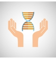 hands with DNA structure medical icon vector image