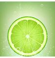 lemonade lime vector image vector image