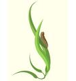 funky caterpillar vector image