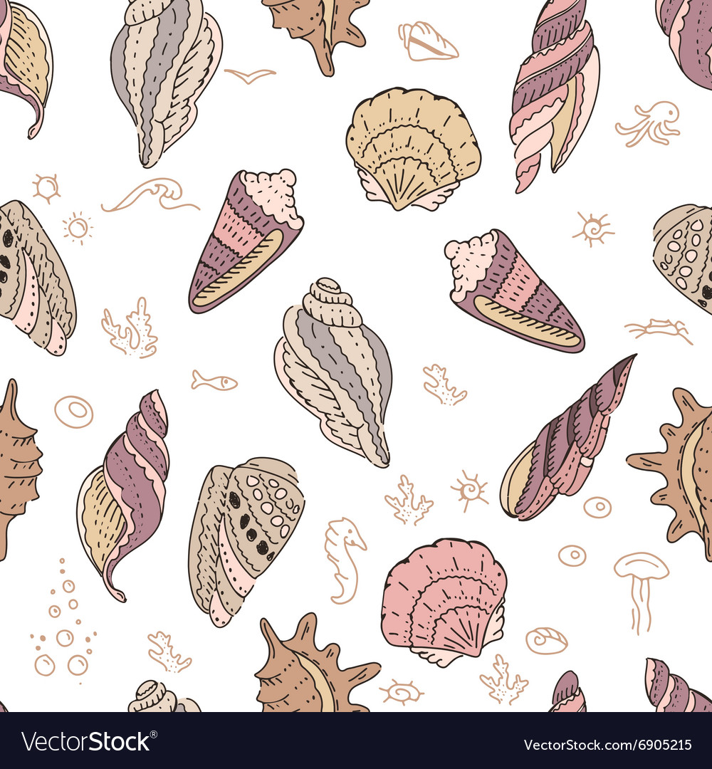Seamless pattern with shells on white vector