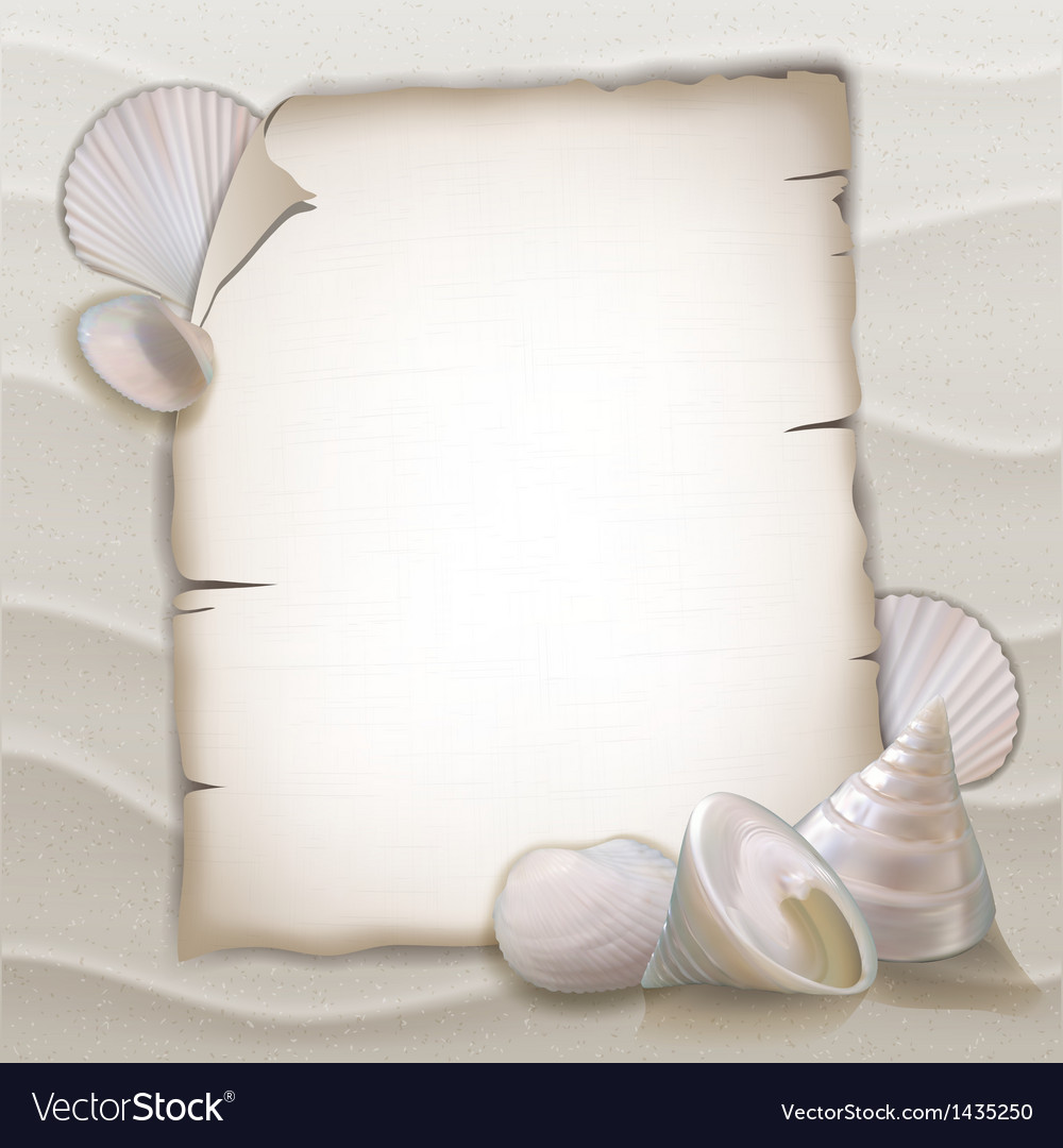 Shells and blank paper sheet vector