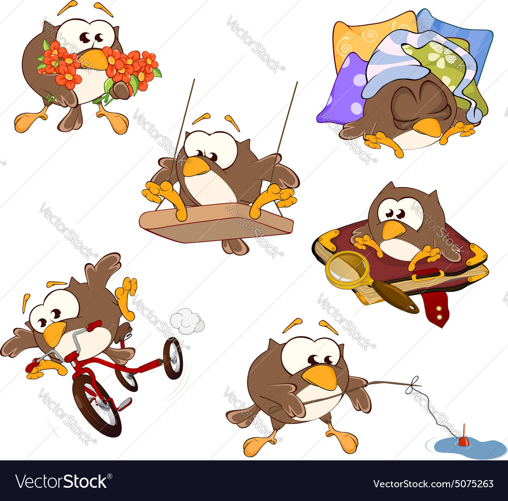 Set of cute owls for you design cartoon vector