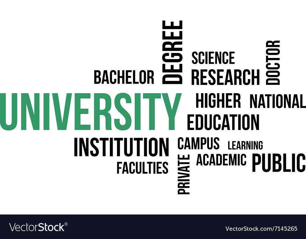 Word cloud university vector