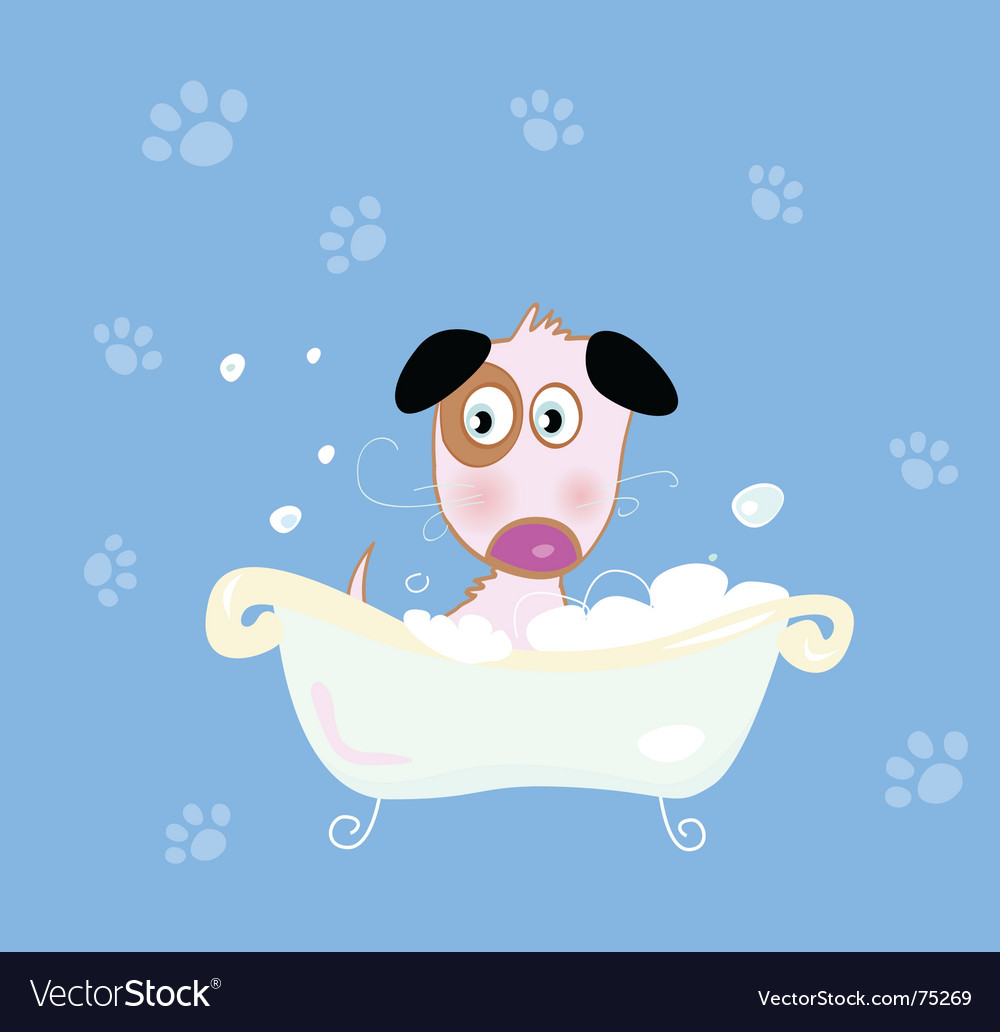 Puppy dog bath vector