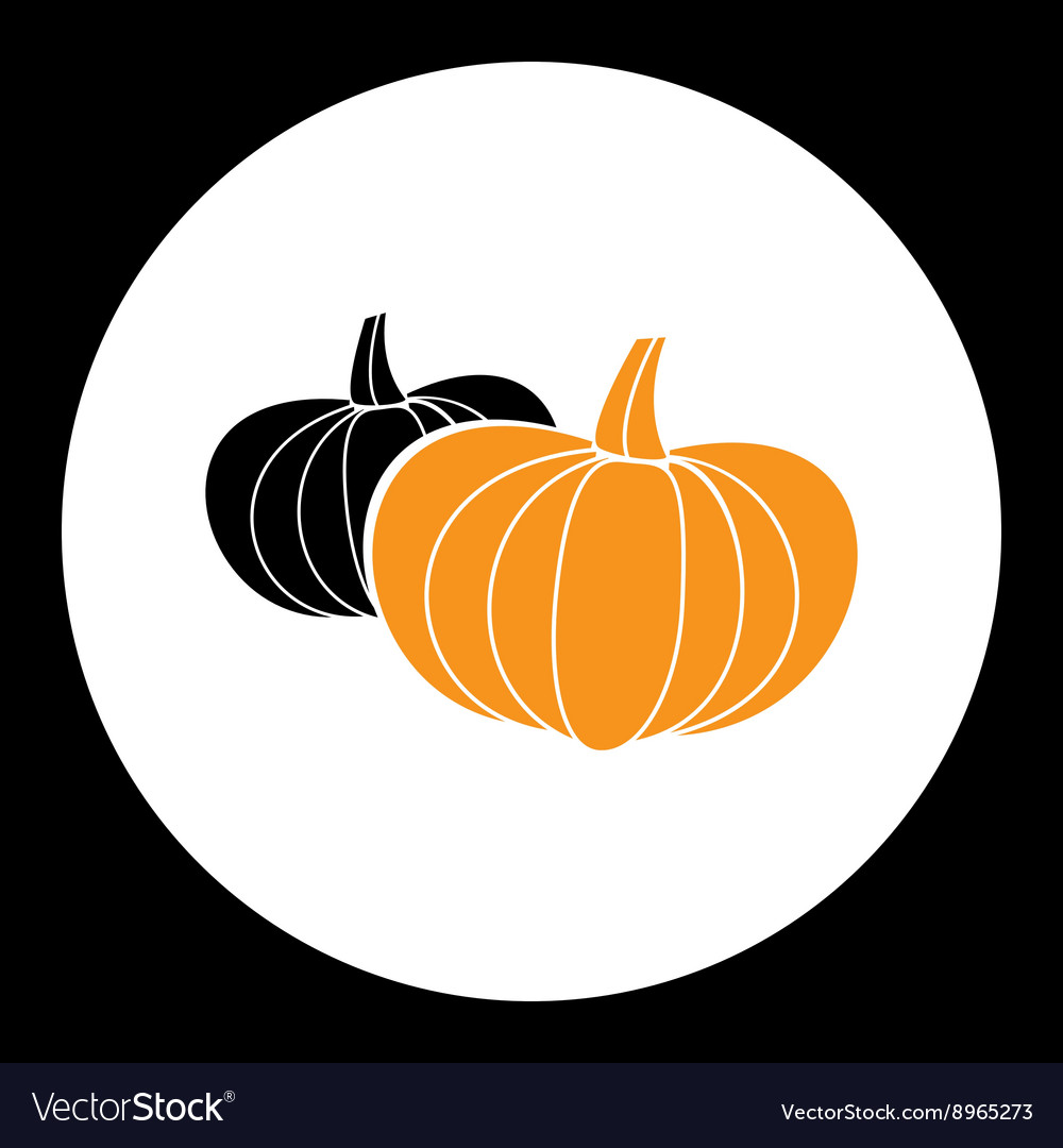 Two simple pumpkins for food or halloween icon vector
