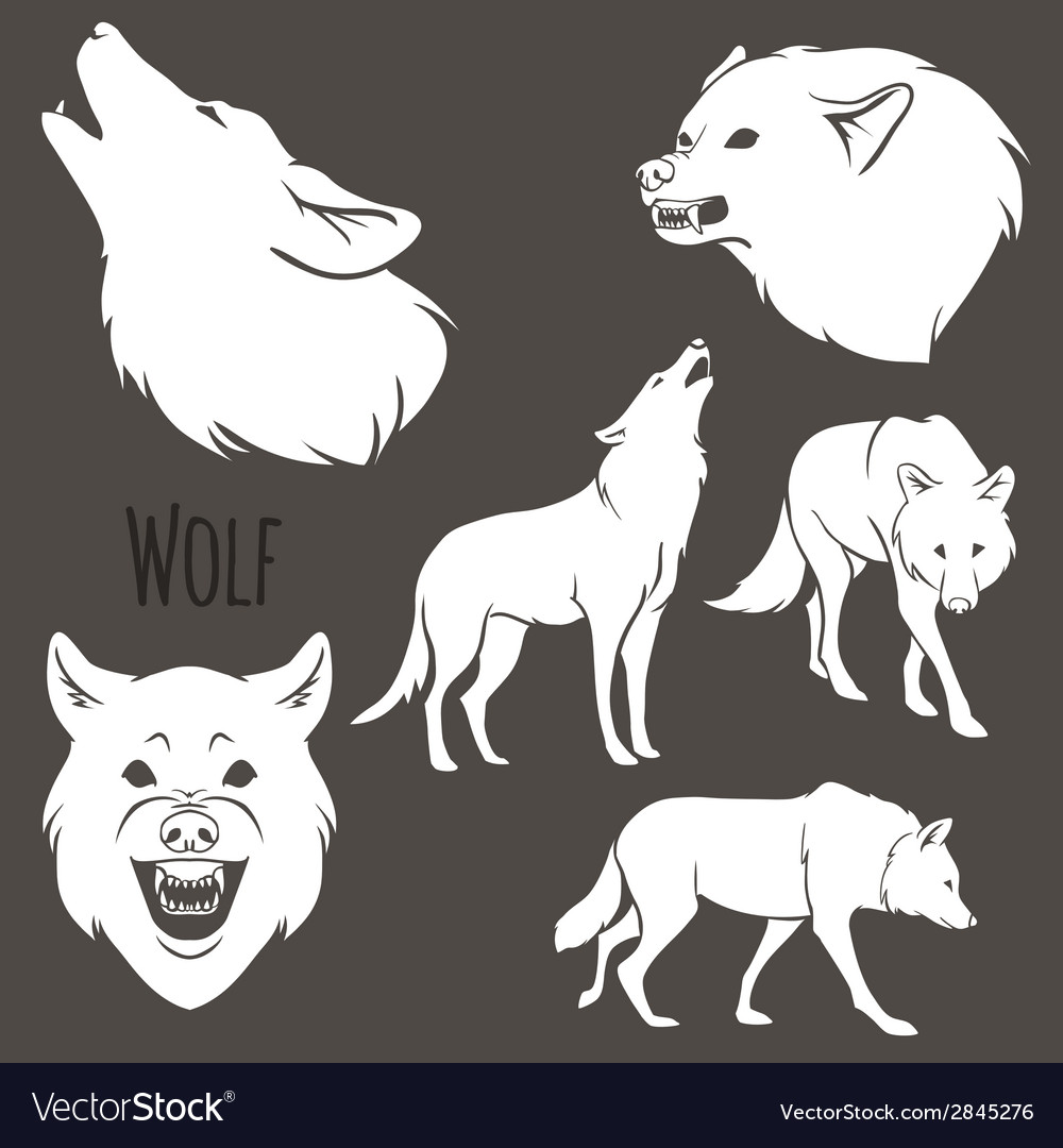 Grey wolf silhouette set vector