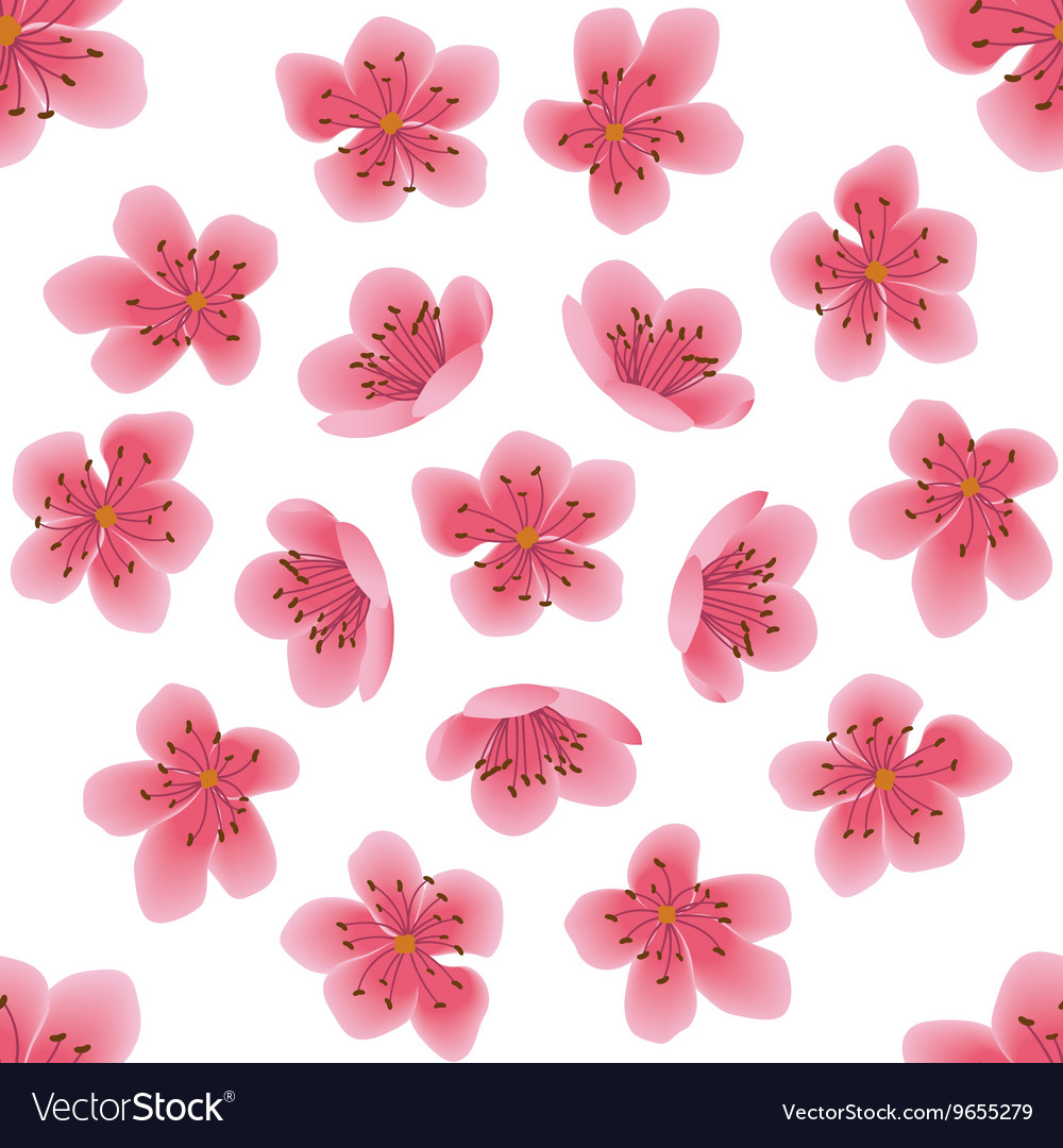 Seamless pattern with sakura flowers vector