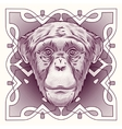 Hand drawn portrait of Monkey isolated vector image
