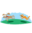 Angry Cat Hunting a Dog vector image vector image