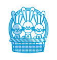 happy easter bunny basket ornament celebration vector image