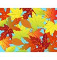 autumn leaf background vector image vector image
