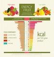 Basics dietary nutrition vector image vector image
