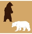 bears vector image