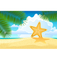 Starfish on the beach vector image