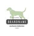 dog handdrawn logo isolated on white background vector image