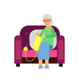 grandmother sitting in a cozy armchair knitting vector image