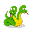 Two Headed Snake vector image
