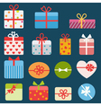 Set of different colorful gift boxes vector image vector image
