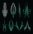 pinstripe016 vector image