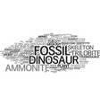 fossil word cloud concept vector image