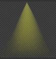golden rain effect vector image