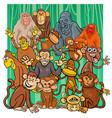 cartoon monkey characters group vector image