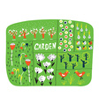 Garden plan with beds funny vector image