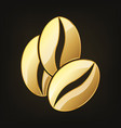 golden coffee beans vector image