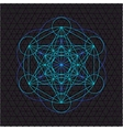 metatron outline seed of life sacred geometry vector image