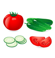Cucumber and tomato vector image