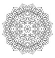 floral mandala round pattern vector image