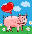 Pig cartoon with heart balloon vector image