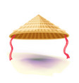 chinese conical straw hat vector image