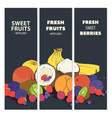 fresh fruit cards vector image vector image