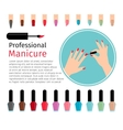 Nail polish and different colors nails vector image